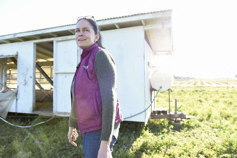 Co-owner Trini Campbell walks past a chicken coop at Riverdog Farm. Photo: Michael Short, Special To The Chronicle