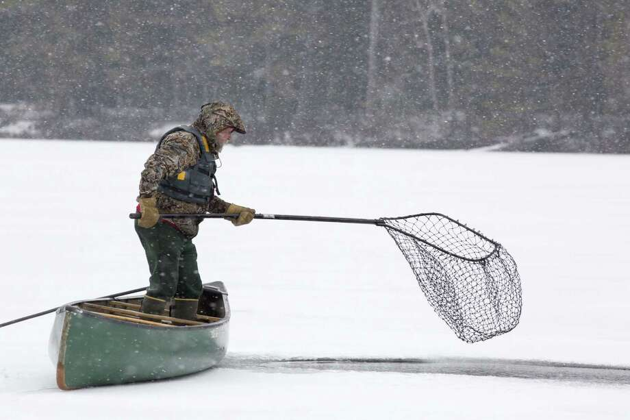 Gary Lee of Inlet tries to net a stranded loon on Follensby Pond in the Adirondacks on Dec. 21. He succeeded. (Photo by Mike Lynch) Photo: Mike Lynch / Mike Lynch