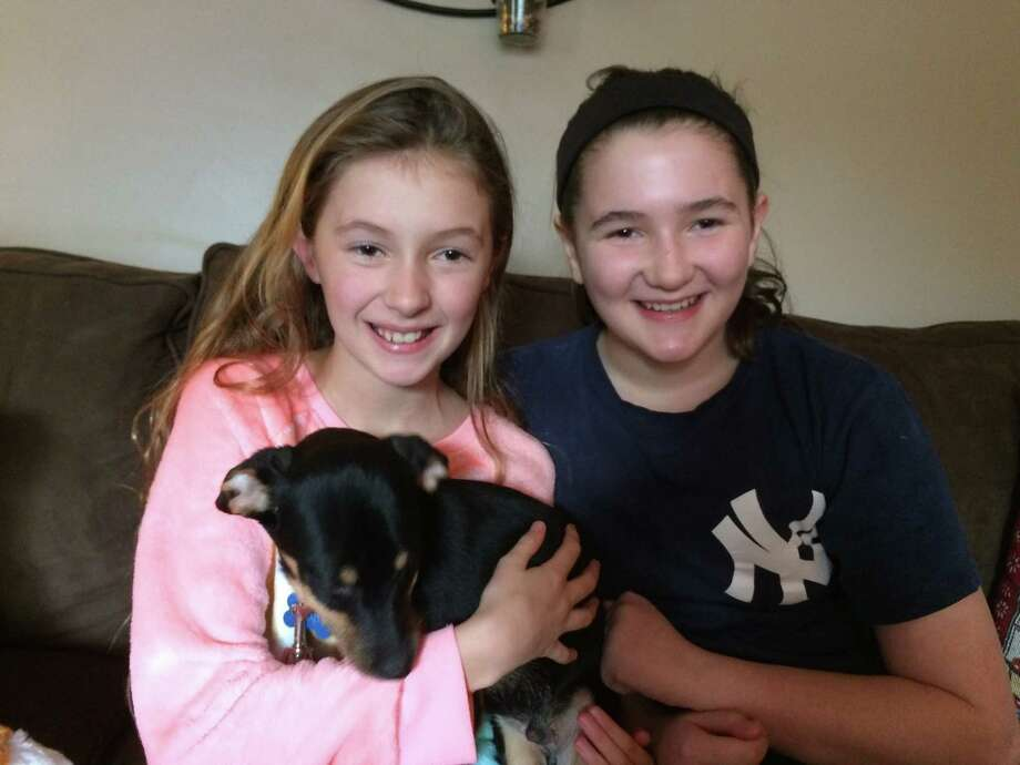 Kelsey, 10 and Megan, 11, snuggle with Buddy, their new terrier mix puppy that Santa delivered at their home on Christmas Day,  December 25, 2016. (Photo courtesy of the Mohawk Hudson Humane Society)