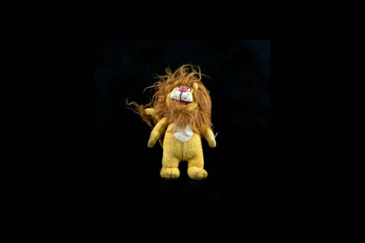 Case: 0408 Assumed sex: Male Assumed age: 35 to 56 Date found: Nov. 3, 2009 County: Jim Hogg  Notes: Found in Hogg County and buried at Sacred Heart Cemetery in Brooks County. A stuffed toy lion was among several items found with the remains. Source: Texas Observer
