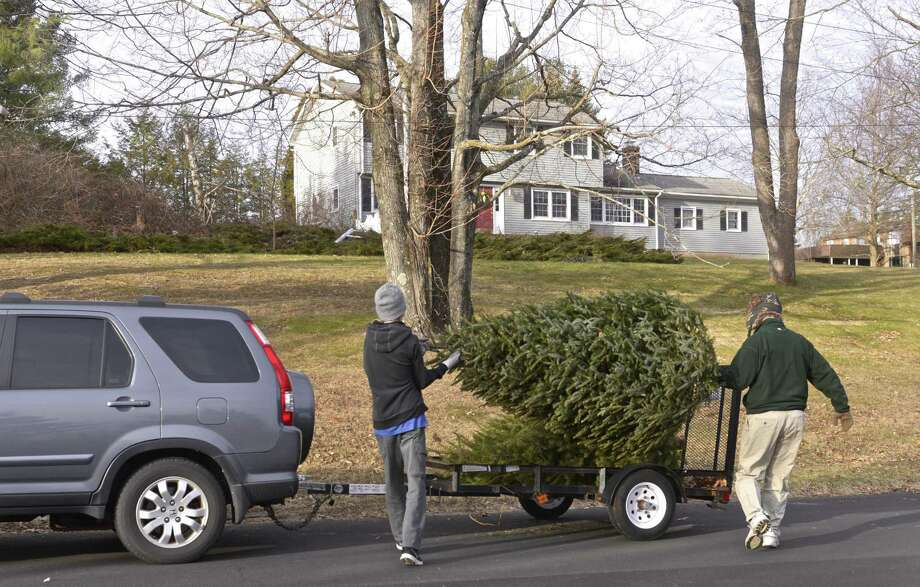 File photo of a previous Boy Scout tree collection. Photo: H John Voorhees III / H John Voorhees III / The News-Times