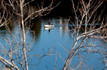Rain, trout stocks revitalize Bay Area lakes - SFChronicle com