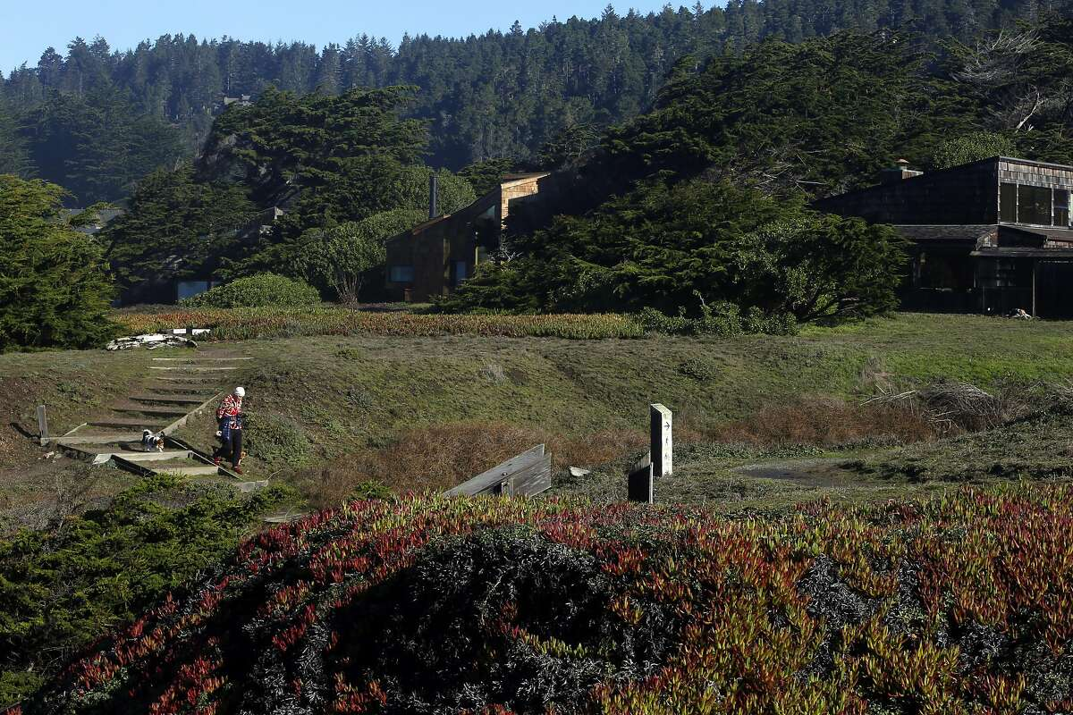 A woman walks her dogs on the trail at The Sea Ranch.