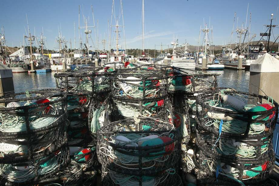 Crab pots are stacked aboard the Seastar at Spud Point Harbor in Bodega Bay. Photo: Michael Macor, The Chronicle