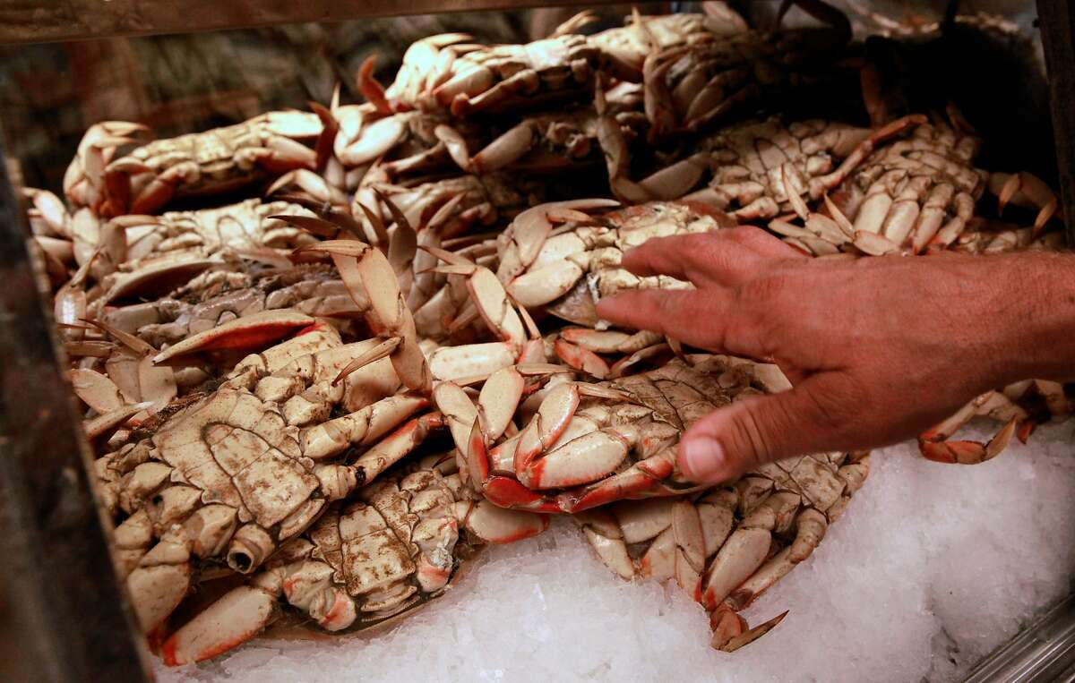 Shane Lucas of Lucas Wharf and Fishetarian restaurants is down to his last 50 Dungeness crabs and out of live crab completely in Bodega Bay, California, as seen on Thursday December 29, 2016. Crab fisherman along the coast from Bodega Bay to the Canadian border are holding a strike over the price of crab they are being offered from buyers.