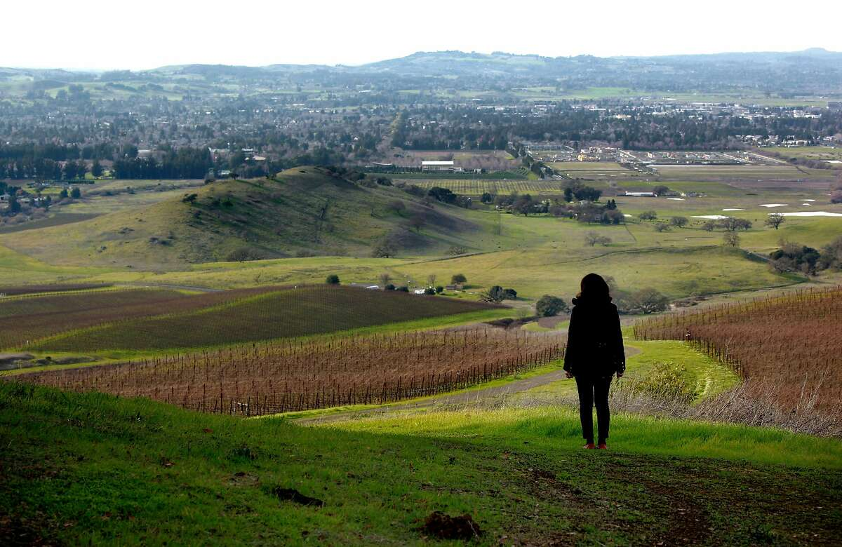 Rickey Trombetta Stancliff, CEO of Trombetta Family Wines and the current president of the Petaluma Gap Winegrowers Alliance, is seen at the Gap's Crown Vineyard in Pengrove, California, on Tuesday December 27, 2016.