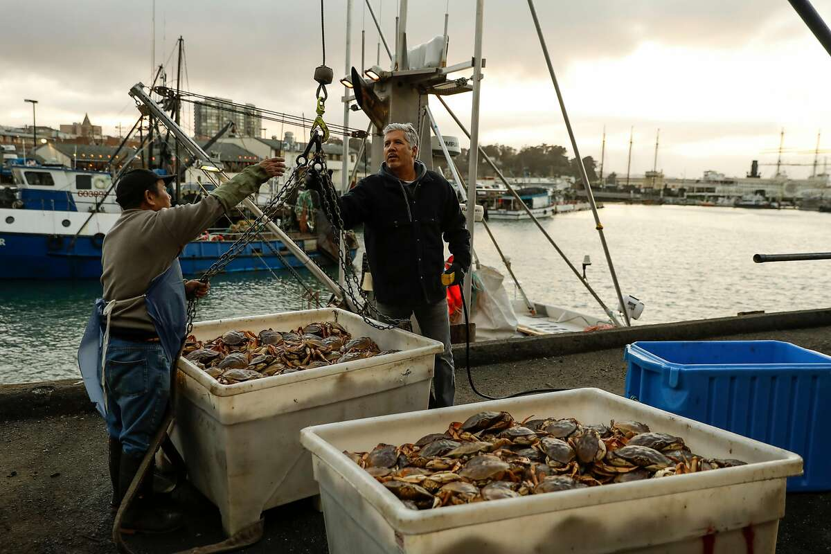 """Bing Kun Hu (left) of Alber Seafoods and Shane Wehr (right) captain of the fishing boat """"Natalie Nicole"""" after unloading fresh caught crab at Pier 45 in San Francisco, California on Friday December 30, 2016."""