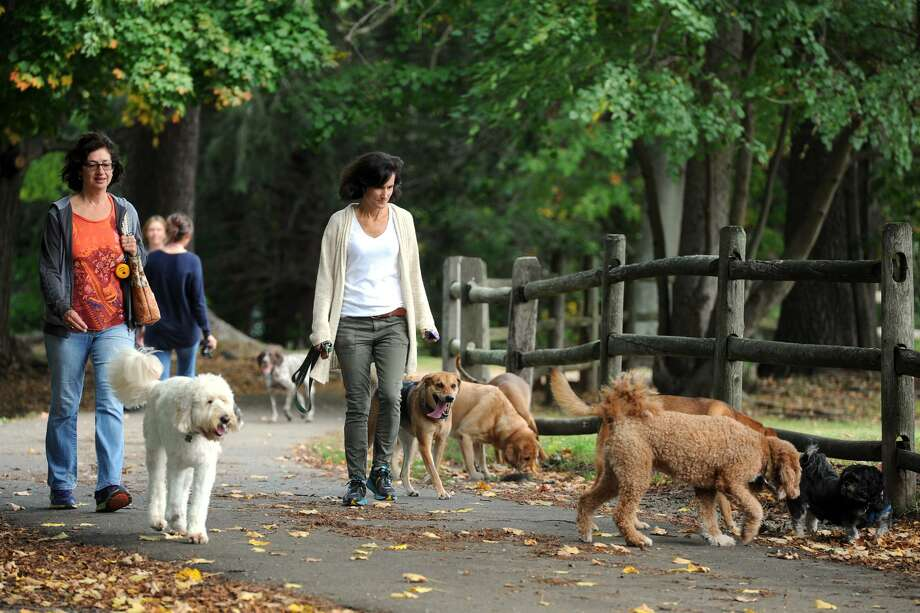 Ana Rogers and Jen Putman walk a dogs at Winslow Park, in Westport, Conn., on Oct. 7, 2014. The park has a large section of fields and trails where dogs are allowed to roam off-leash. Officials envision a more fenced-in affair for Stratford, if a site can be agreed upon. Photo: Ned Gerard / Ned Gerard / Connecticut Post