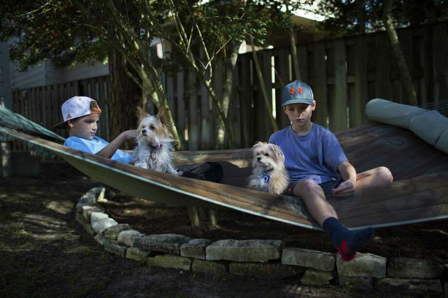Benner Grau, right, 11 and his twin brother Hayden Grau enjoy a sunny crisp afternoon with their dogs Bunny and Luca on their backyard in The Woodlands, Wednesday, Dec. 21, 2016. ( Marie D. De Jesus / Houston Chronicle ) Photo: Marie D. De Jesus, Staff / Houston Chronicle / © 2016 Houston Chronicle