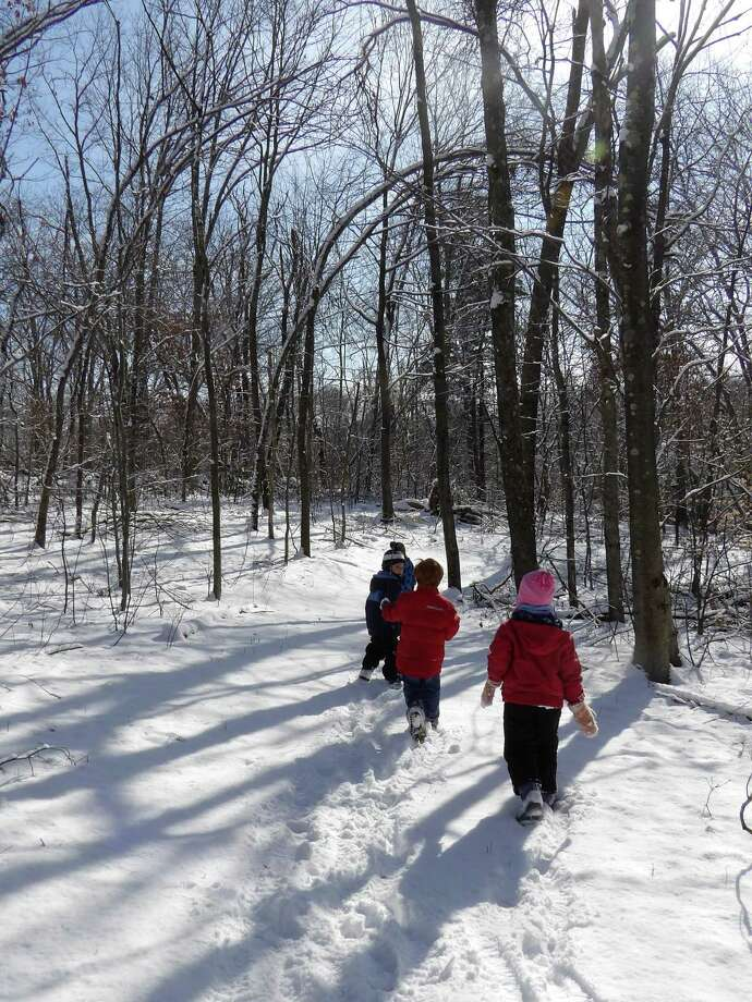 On Monday, January 16 while off from school for the Martin Luther King Day holiday, kids are invited to come to Flanders to spend the day learning about the animals that live at Flanders and in the wild. Photo: Contributed Photo / Connecticut Post