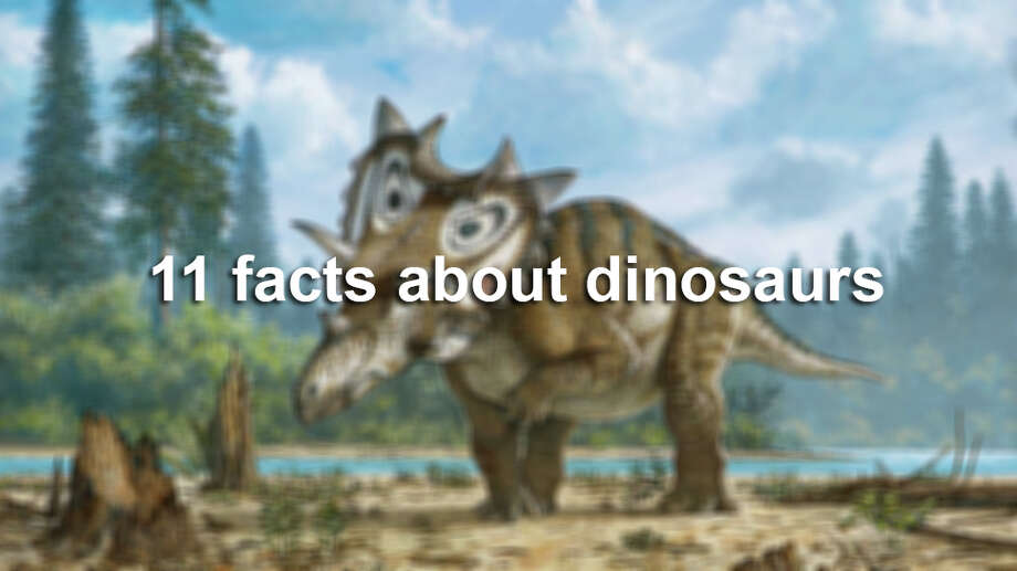 Here are 11 facts about dinosaurs. Photo: Mike Skrepnick/Associated Press