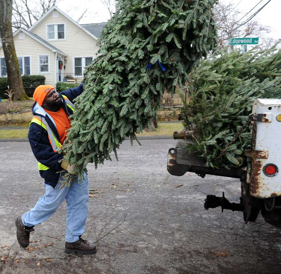 In this file photo from 2013, James Taylor picks up Christmas trees for disposal on Edgewood Avenue in Stamford. Photo: File /Hearst Connecticut Media / Stamford Advocate
