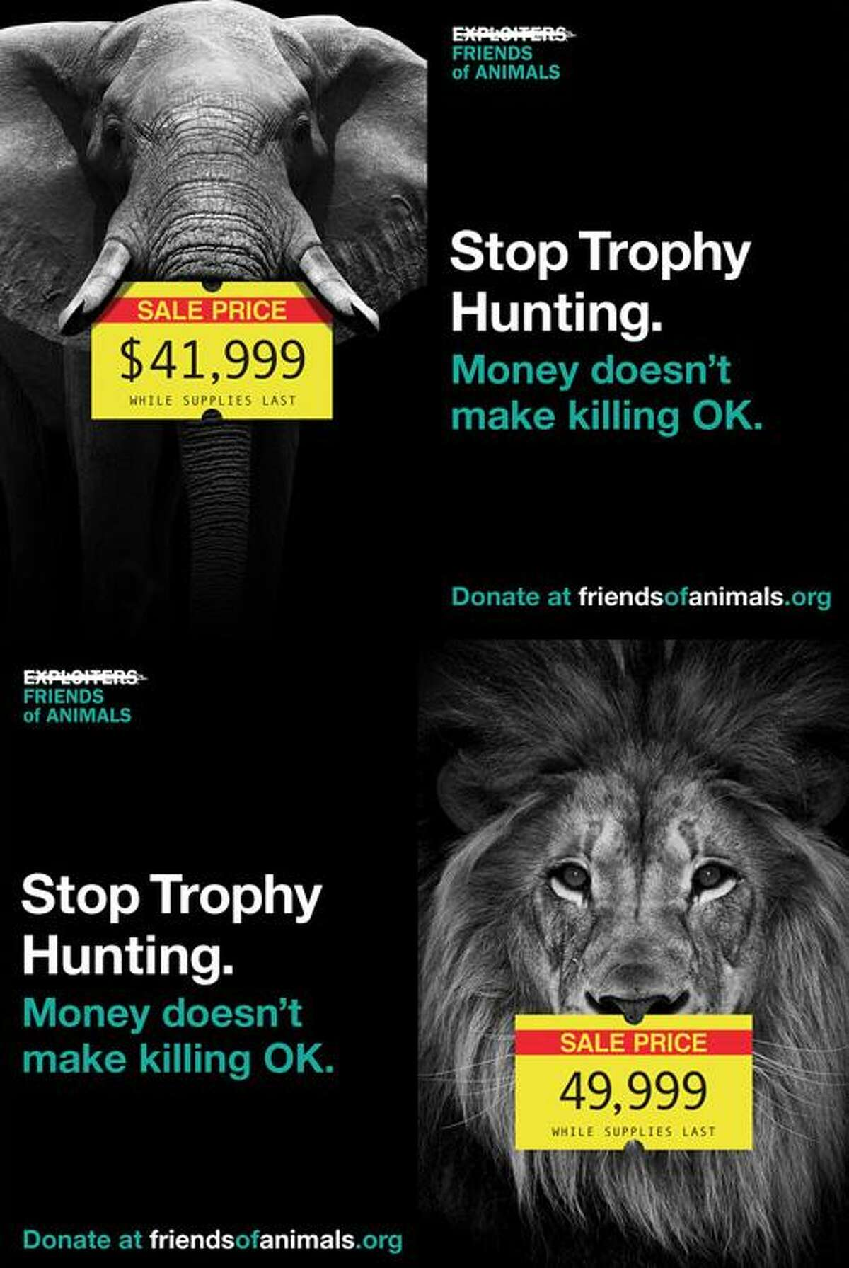 An image from Friends of Animals' anti-trophy hunting campaign, released on Dec. 13, 2016. Friends of Animals is based out of Darien, CT.