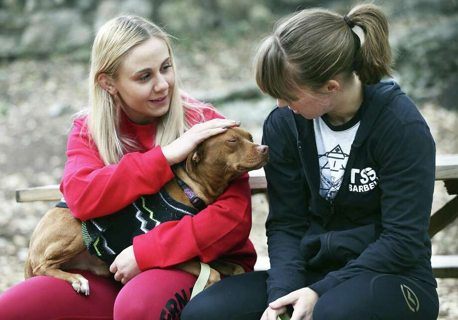 Jilly Jaworski (left) and Brittany Rucker get to know 3 year old mix Buster at the Paul Jolly Center for pet adoption on January 4, 2016. Photo: Tom Reel, Staff / San Antonio Express-News / 2017 SAN ANTONIO EXPRESS-NEWS