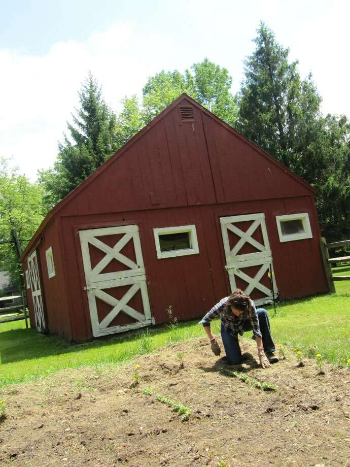 Margaret Feeney gets to work on her farm property on Congress Street. Photo: Kirk Lang / Fairfield Citizen