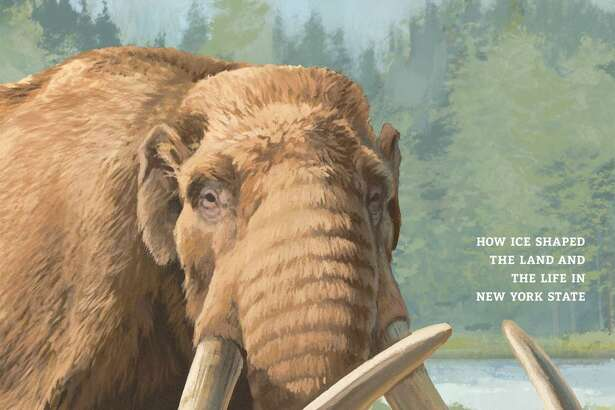 Ice Ages exhibit - New York State Museum