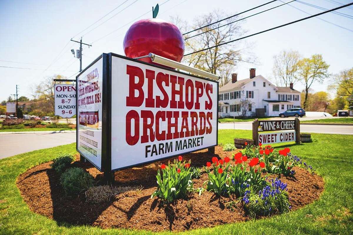Bishop's Orchards- Guilford Bishop's Orchards is only open on weekends in September through mid-October for cider Featured ciders: farmhouse-style,New England-style and goldenhard ciders