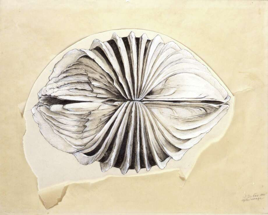 "Jay DeFeo's ""After Image,"" from 1970. [Graphite, gouache, and transparent acrylic on paper with cut and torn tracing paper, overlay: 10 7/8 × 13 3/4 in. (27.6 × 34.9 cm), primary support: 14 × 19 1/2 in. (35.6 × 49.5 cm). The Menil Collection, Houston, Gift of Glenn Fukushima in honor of the artist. © The Jay DeFeo Foundation / Artists Rights Society (ARS), New York] Photo: Jay DeFeo Foundation / Artists Rights Society, The Menil Collection / Photo: Paul Hester"