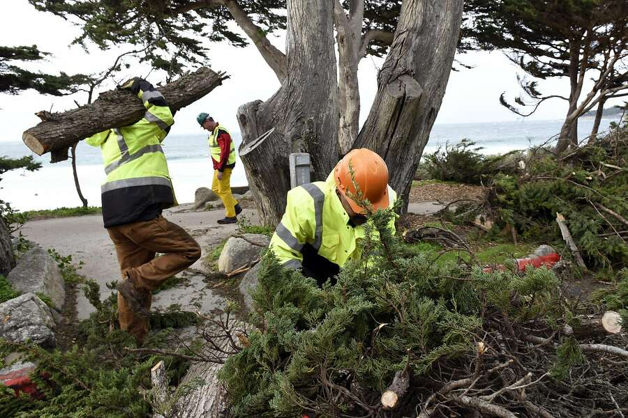 Austin Vincent, left, and Juan Rodriguez of Iverson's Tree Service clean up branches from a fallen tree on Scenic Drive in Carmel, CA, on Saturday, January 7, 2017. Photo: Michael Short, Special To The Chronicle