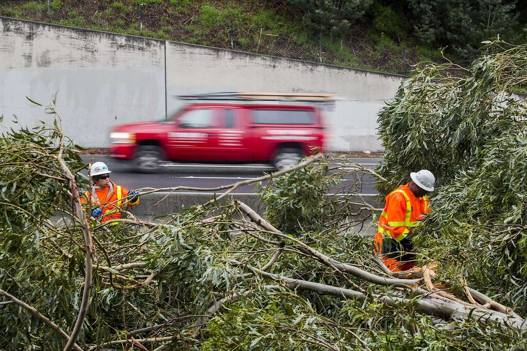 Trailer Park CalTrans Workers Clear A Eucalyptus Tree That Fell Across The Southbound Exit Ramp At Highway 13