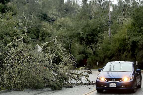 A car crosses into the opposite lane to avoid a downed tree on Quail Hallow Road in Ben Lomond area of Santa Cruz , Calif. on Sunday afternoon, Jan. 8, 2017, as a record-breaking storm ravaged Santa Cruz County. (Kevin Johnson/The Santa Cruz Sentinel via AP)