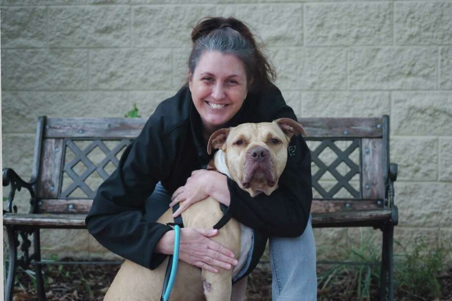 Argus spent 2 years waiting at the League City Animal Shelter before he finally found a home with Tasha Coenen, thanks in part to a social media push to get Argus a family.The shelter staff says they never give up on their pets. Click through the slideshow to see more adorable League City animals who need a home. Photo: Kirk Sides / © 2016 Kirk Sides / Houston Community Newspapers