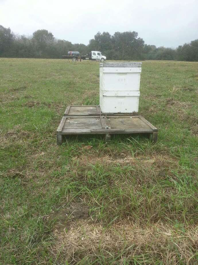 "Beekeeper Randy Verhoek of Danbury posted this photo on a Facebook page for commercial beekeepers, seeking help from the community after 300 bee colonies were stolen in mid-December. The post reads: ""Stolen! 300 Double Deep HHI Branded colonies! BIG reward to anyone who can provide information leading to the prosecution of this lowest life form! Stolen in the Manvel, TX area."" Photo: Randy Verhoek"