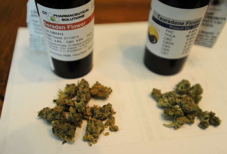 A file photo shows buds from the Cannibis Sativa, left, and Cannibis Indica plants, two of the varieties of medical marijuana used by medical marijuana patients. MOre than 1,000 Texas veterans signed a petition that calls for Legislature to pass a bill that would allow doctor-recommended use of marijuana for medical conditions, not just epilepsy. Click ahead to view where it's legal to smoke recreational, medical marijuana in the U.S.  Photo: Brian A. Pounds / Hearst Connecticut Media / Connecticut Post