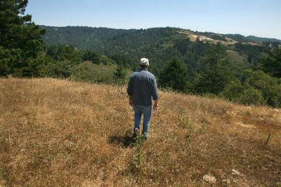 Coast Dairies, a stretch of wilderness and ranch land north of Santa Cruz, was designated part of the California Coastal National Monument on Thursday.