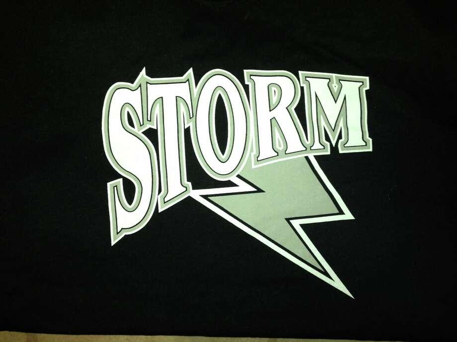 Mid-Michigan Storm