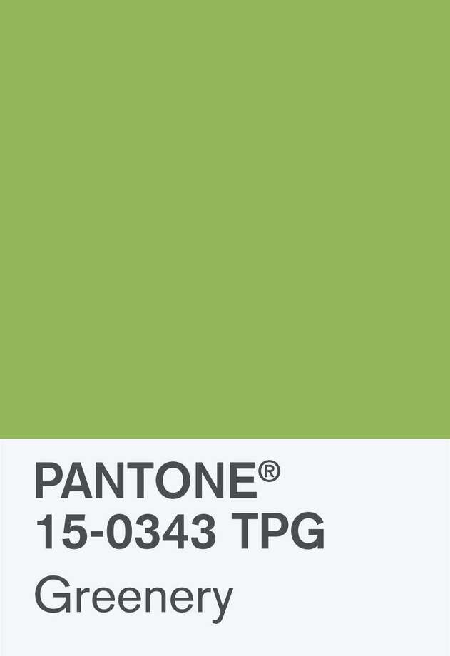 Pantone selected Greenery as the color of 2017. This yellow-green shade is seen as a harbinger of spring and a color that may inspire individuals to rejuvenate and revitalize. Photo: F. Burrafato / Contributed Photo / Pantone