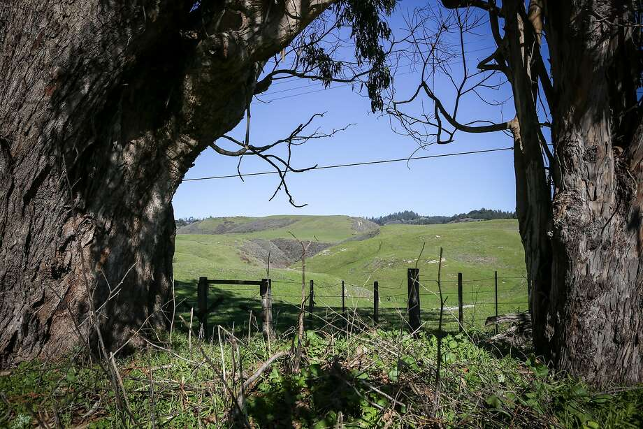 Open space and green rolling hills at Coast Dairies, the newly designated California Coastal National Monument in Santa Cruz County. Photo: Amy Osborne, Special To The Chronicle