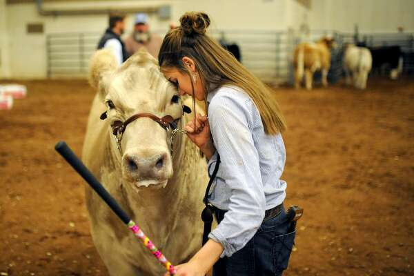 "Cassiejo Bennett of Greenwood, gives her steer ""Woody"" some affection after winning Grand Champion in the exotic class during the Midland County Livestock Association Annual Show on Friday, Jan. 13, 2017, at Horseshoe Arena.  James Durbin/Reporter-Telegram"