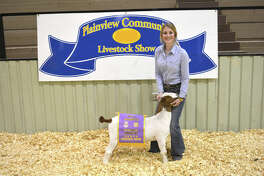Colti Wright exhibited the Grand Champion Goat on Thursday at the Plainview Community Stock Show. Reserve Grand Champion Goat honors went to Talon Ballesteros. Mackenzie Winters received Showmanship honors.