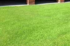 A Grass4Sale.com Inc. customer reported ordering zoysia grass but receiving another type of grass, according to a lawsuit filed by Texas Attorney General Ken Paxton. Grass4Sale hauled away the zoysia grass but never delivered the grass the customer ordered. The customer did not get a refund, the suit added.