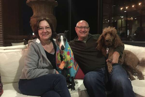Brew Street: Julie and Paul Hooper with their dogs, Lily and Meg
