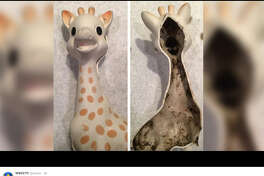 Sophie The Giraffe is is a nasty situation as one mom took to social media to voice her concerns with the black mold growing inside her child's teething toy. 