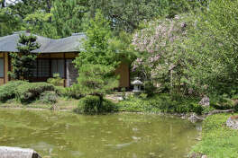 The Japanese Garden, which is turning 25 years old this year, has recently received a lot of renovation work.