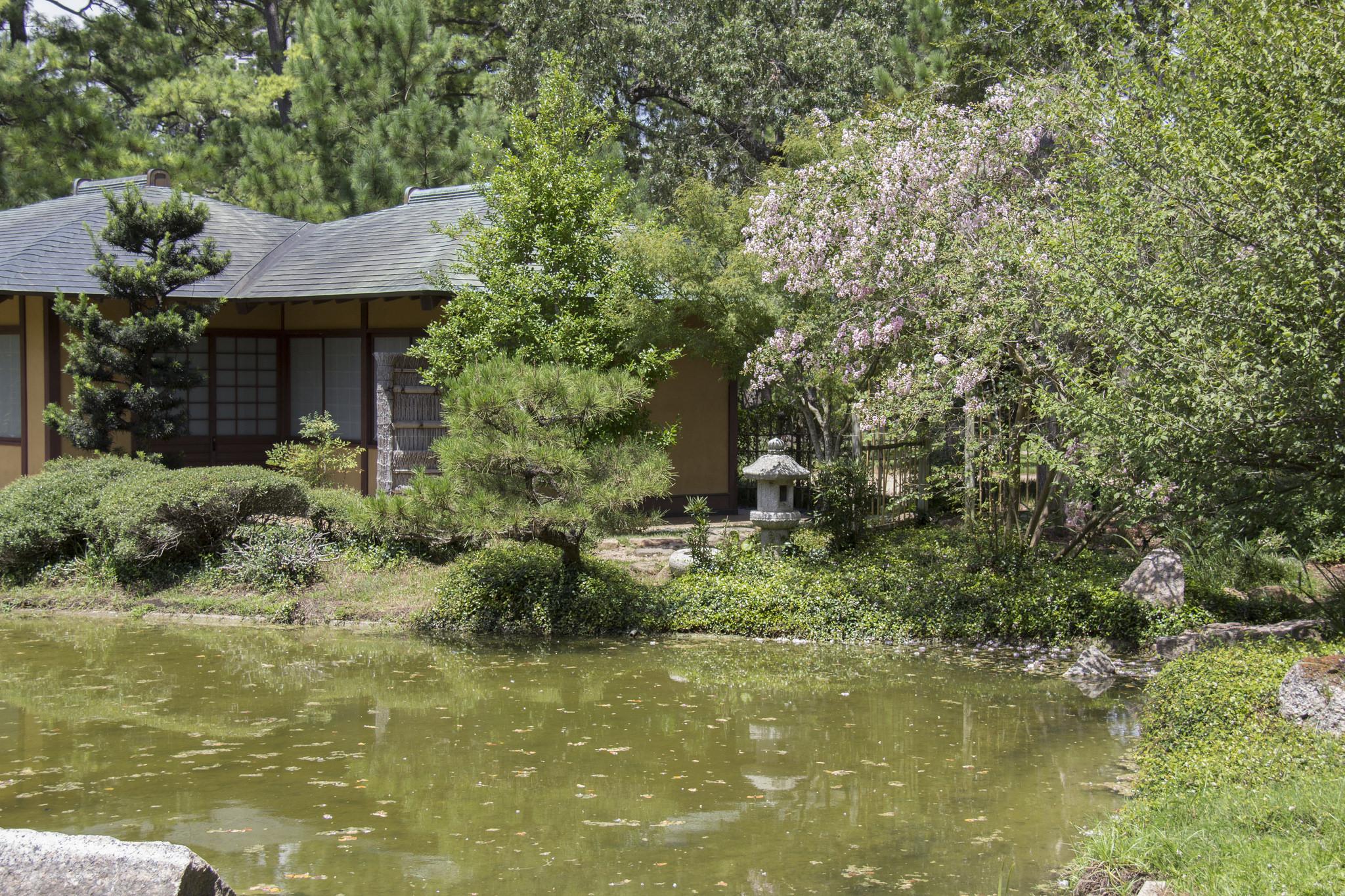 Japanese Garden In Hermann Park Turns 25 Houston Chronicle