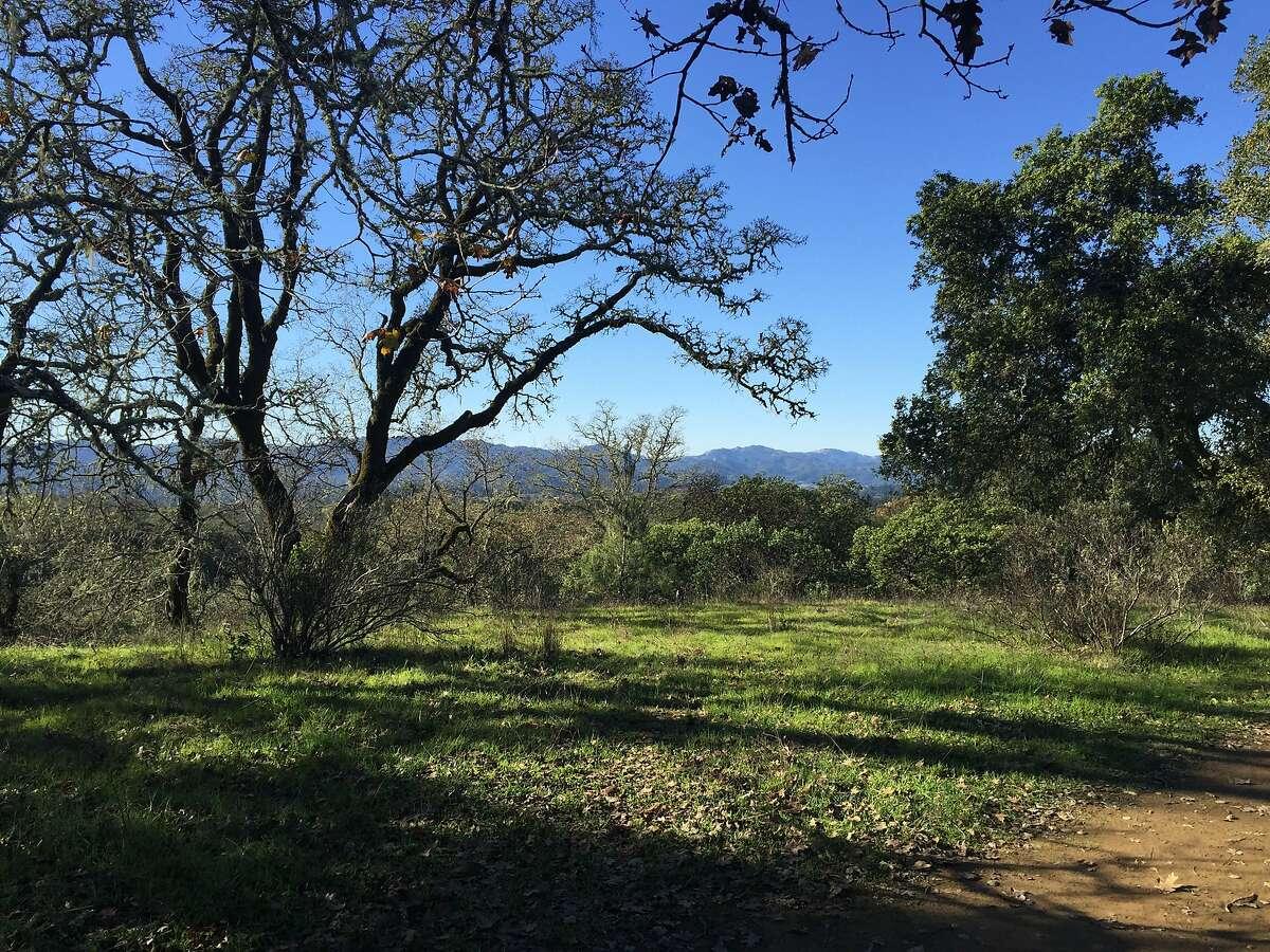 The All Oaks Trail at Healdsburg Ridge Open Space Preserve.