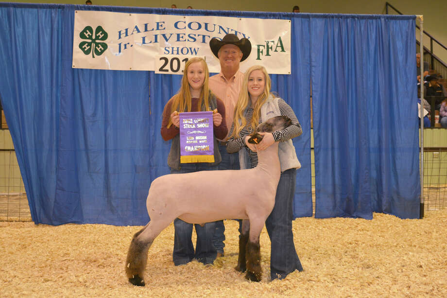 Karlee Hegi of Abernathy FFA exhibited the Grand Champion Lamb at the 82nd Annual Hale County Stock Show. It drew a winning bid of $1,600 from Petersburg Co-op Gin.