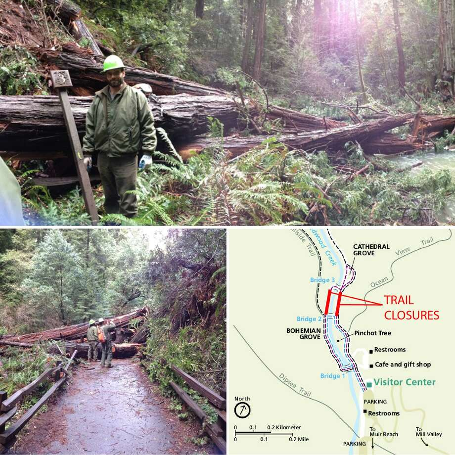 Rangers at Muir Woods National Monument work on Wednesday to clear trails blocked by several redwood trees that fell over night and prompted the closure of the park in Marin county. Photo: Golden Gate National Recreation Area / /