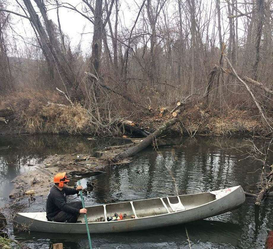The staff of Gentile Tree Care of New Milford recently helped clean up trees that had fallen across the Still River at Harrybrooke Park. Photo: Contributed Photo / Contributed Photo / The News-Times Contributed