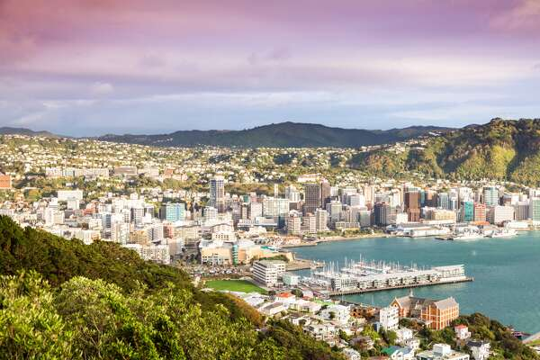 High angle view of Wellington CBD and harbour at sunrise, North island, New Zealand  (Credit: Matteo Colombo)