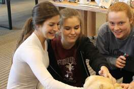 Sophie Ackerman, Quincy Cole and Lily MacDonald enjoy taking time with Lily the therapy dog at Wilton Library during last years midterm exam week.
