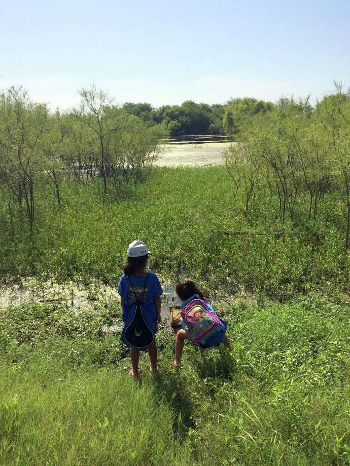 The Mitchell Lake Audubon Center is offering an open house and daily activities during Spring Break. Photo: Courtesy Laurel Smyth / Courtesy Laurel Smyth
