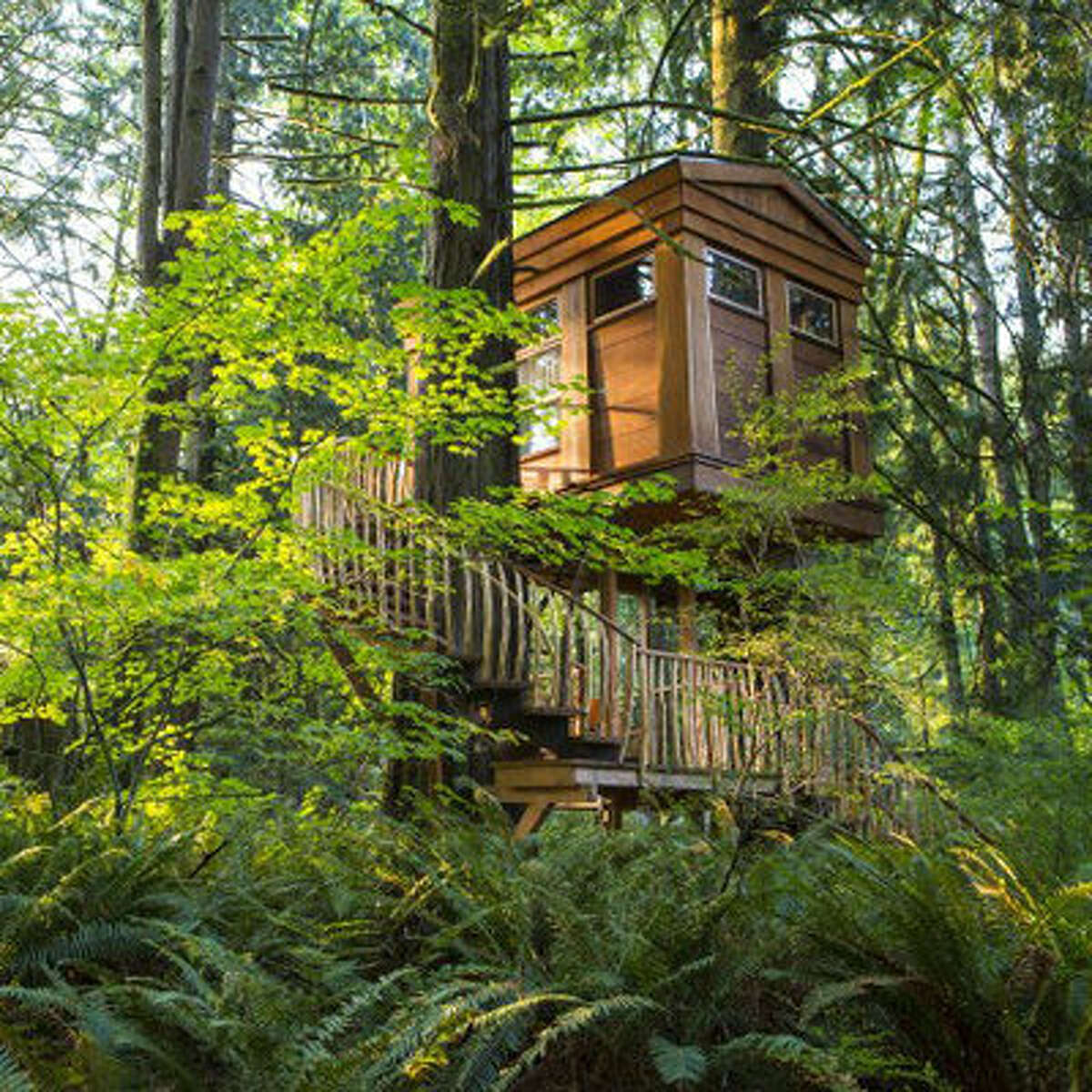 Northwestern treetop hideaway Head to the Pacific Northwest to enjoy the magical grounds of Treehouse Point. Situated in lush forest of Fall City, Washington, this retreat center is home to six different treehouses-each crafted by world-renowned treehouse builder and author Pete Nelson. These incredibly, inventive designs come with well-kept living and sleeping quarters, as well as ground-floor bathrooms and a communal dining and lounge areas within the Main Lodge.