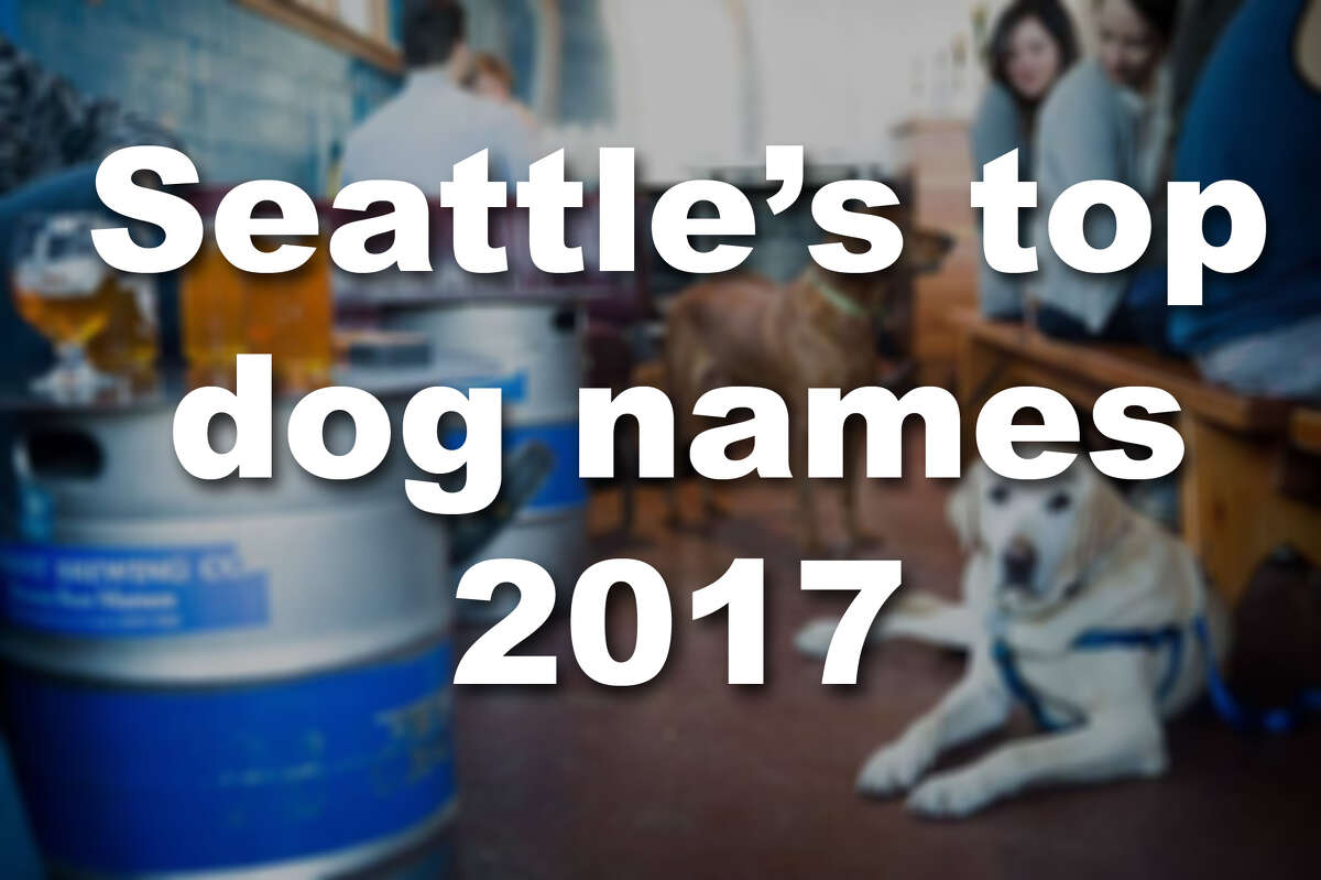 Click through the gallery to see Seattle's top dog names, plus a few of our favorite rare names.