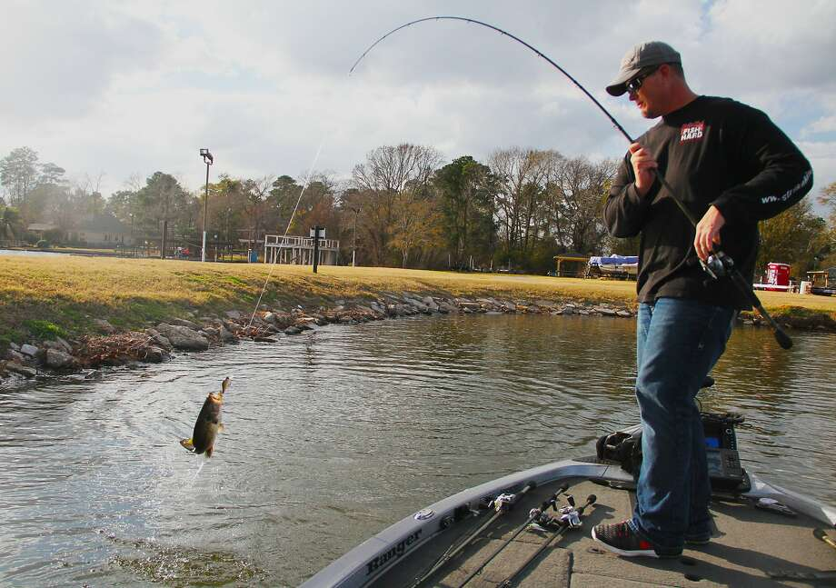 Keith Combs swings aboard a Lake Conroe largemouth that hit a crankbait while Combs, one of the nation's top tournament bass anglers, was practicing this past week for 2017 Bassmaster Classic set for this weekend on Lake Conroe. SLIDESHOW: Record catches in Texas  Photo: Shannon Tompkins, Houston Chronicle