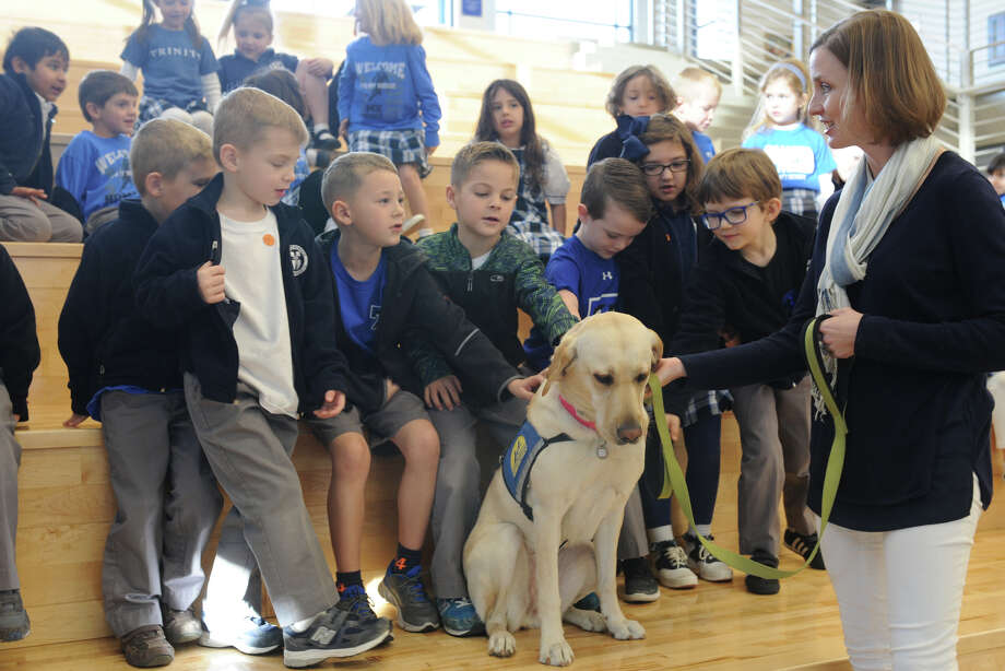Piper, a service dog with the Ham family and representing Canine Companions for Independence, performs a demonstration with Trinity School kindergartners on Friday, Jan. 20, 2017, at Trinity School. James Durbin/Reporter-Telegram Photo: James Durbin